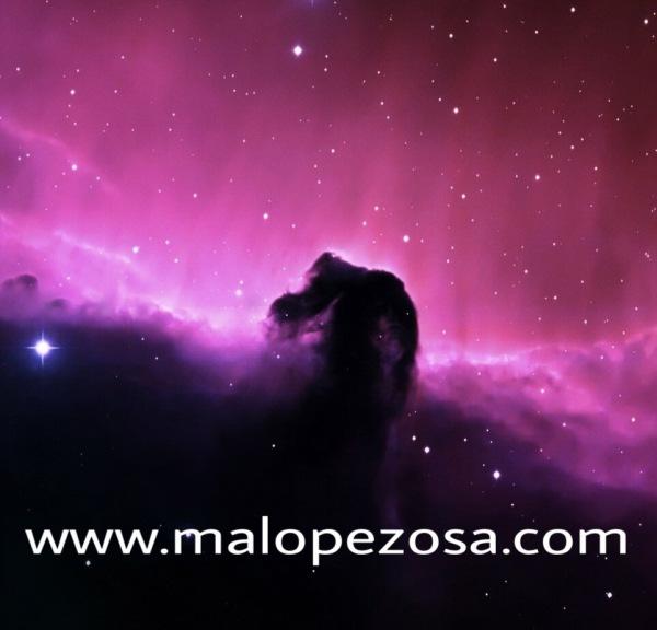 www.malopezosa.com
